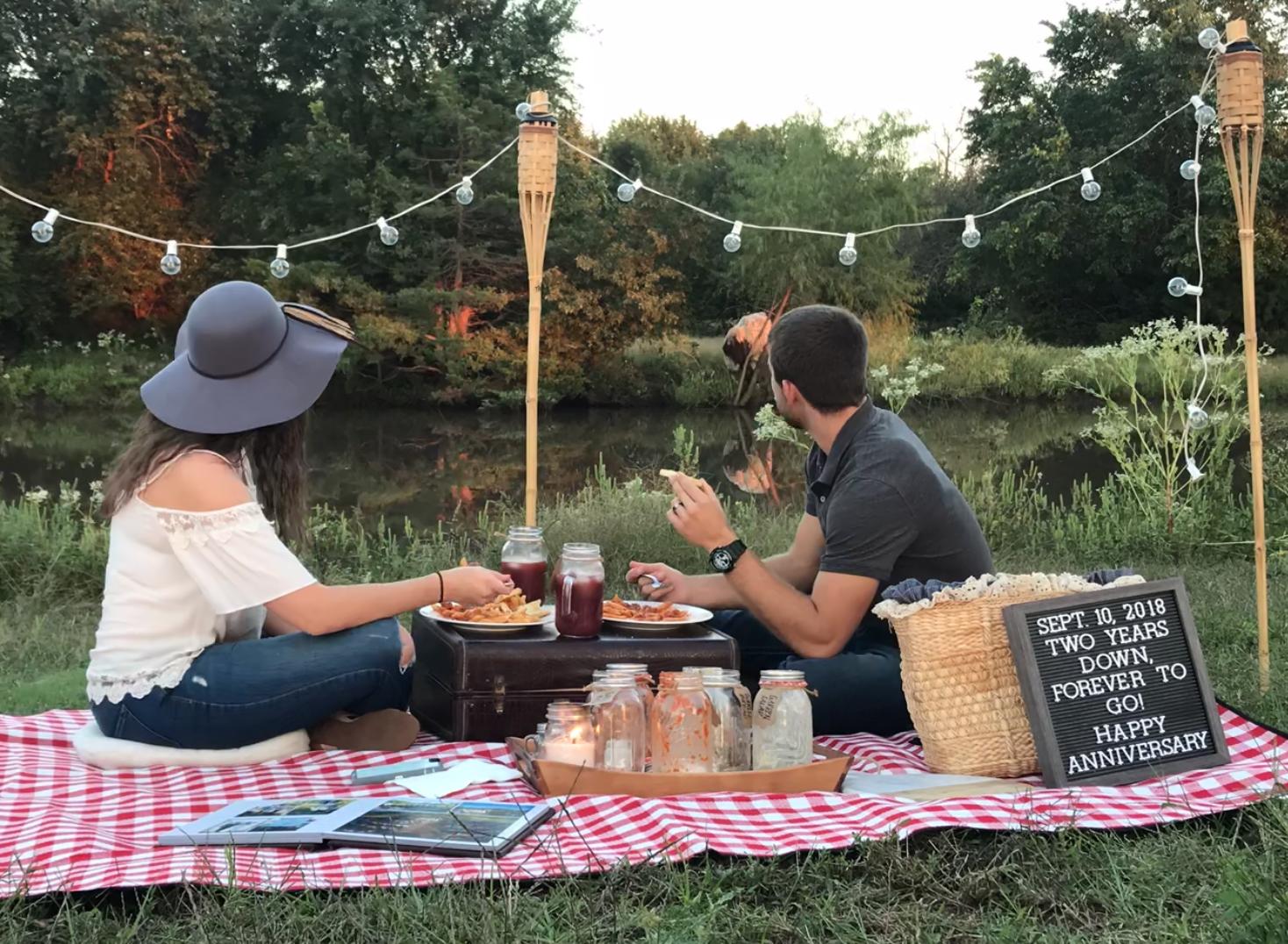 farm, farm life, cow, picnic